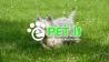 Gyvūnų prekių parduotuvė - www.epet.lt.